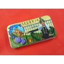 Caramelos de Violeta Lata Segoviana