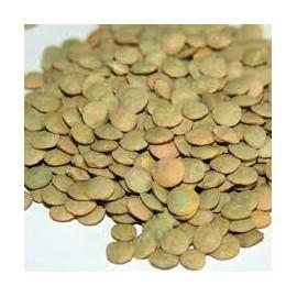 Lenteja Castellana 1 Kg. Granel